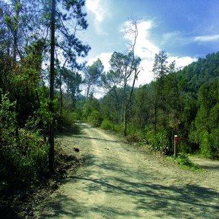 Sant Cugat, contra les pràctiques militars al parc de Collserola